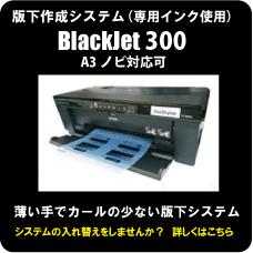Blackjet300
